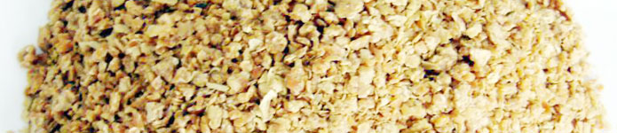 Wheat Products: Enormous Agro Industrial Trade Pvt  Ltd